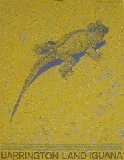 Barrington Land Iguana ,  Original limited edition Silkscreen