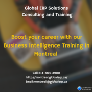 Business Intelligence Training in Montreal